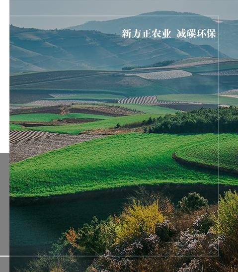 吉林省新方正农业科技有限公司
